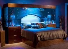 Обслуживание аквариума в Вашем доме
